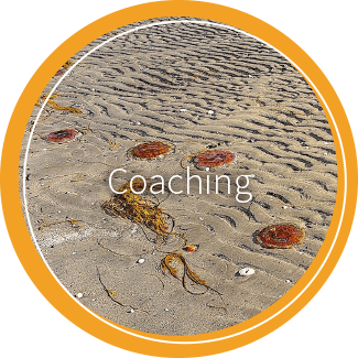 02 kreise heliankar coaching